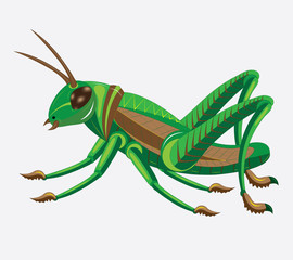 Green-brown grasshopper.