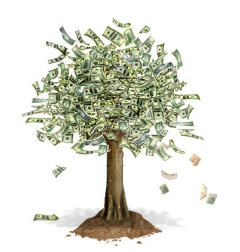 Money Tree with US Dollar bank notes in place of leaves.
