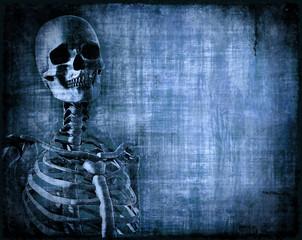 Skeleton Parchment