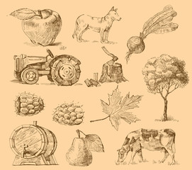 farm collection-handmade drawing