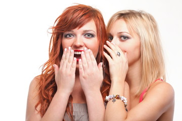 society gossip - two happy young girlfriends talking white backg