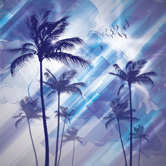 Wall Mural - Palm trees and sunset