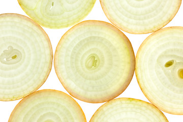 Zelfklevend Fotobehang Plakjes fruit Slices of fresh Onion / background / back lit