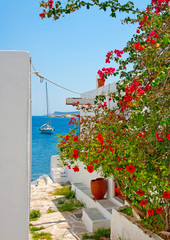 Beutifull view to the sea in Skiathos island Greece