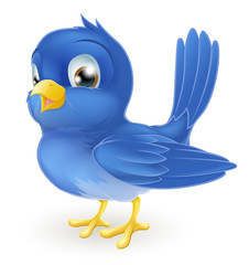 Cute cartoon bluebird