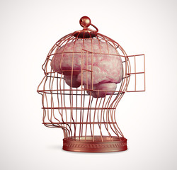 Brain inside a cage