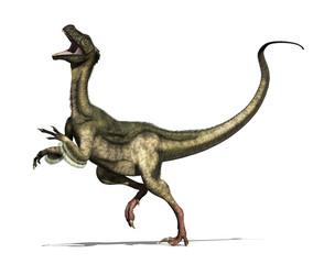 Ornitholestes Dinosaur