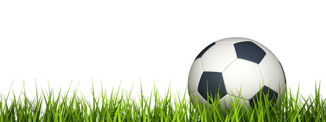3d rendering of a soccer ball on grass