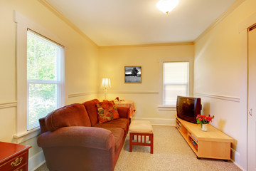 Small simple living room with TV and sofa.