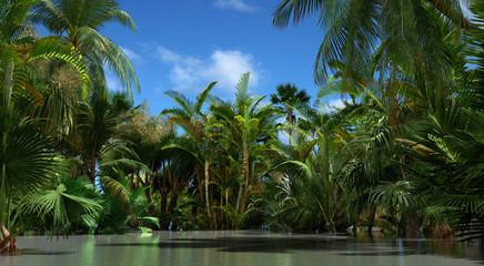 tropischer dschungel