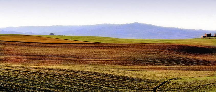 Paesaggio tipico della Toscana, Italia