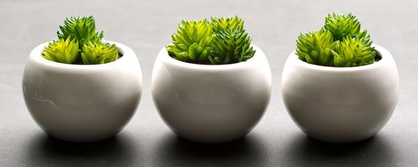Obraz Concept zen - fototapety do salonu