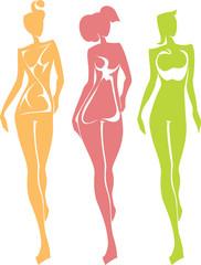 3 Female Body Types