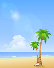 Summer beach with palms. Vector background