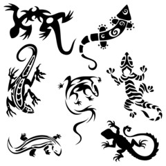 Tattoos lizards (collection) seven silhouettes