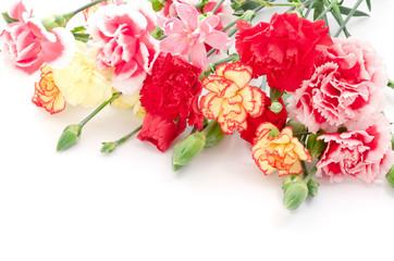 様々な種類のカーネーションの花束