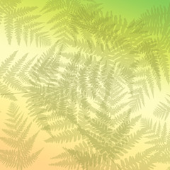 Abstract fern background.