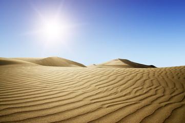 Photo sur Toile Desert de sable Gold desert into the sunset.