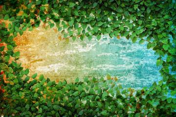 green Fresh leaves frame on white background