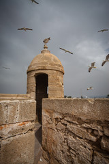 Essaouira, old Portuguese city in Morocco (18)