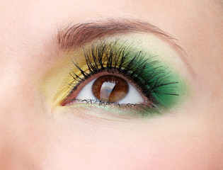 beautiful female eye with bright make-up