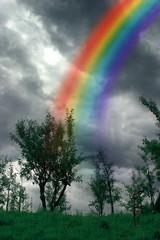 I colori dell'arcobaleno in 12 immagini (12)