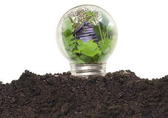 Ecological Bulb