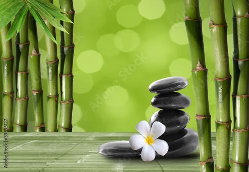 Цветок, черные камни, стебли бесплатно