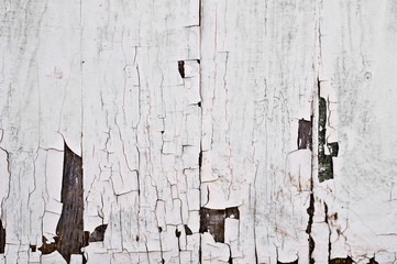 vintage painted  white wooden  texture