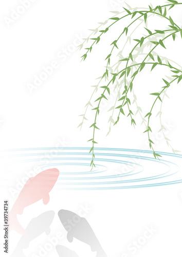 柳と鯉fotoliacom の ストック画像とロイヤリティフリーのベクター
