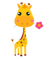Baby giraffe and flower. Vector illustration.