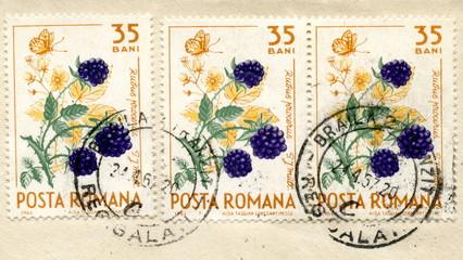 "Vintage romanian postage stamps ""Blackberry"""
