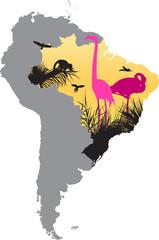 Map picture whit pink flamingos in Brazil