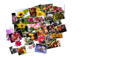 Karte mit Blumen-Collage