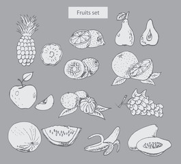 fruits set hand drawn illustrations