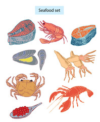 seafood set hand drawn illustrations