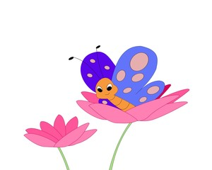 Butterfly sitting in a pink flower