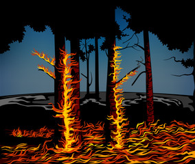 Seasonal forest fires and forest destruction