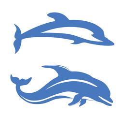 two dolphins on white background,
