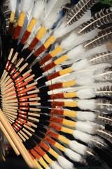 Native South American costume