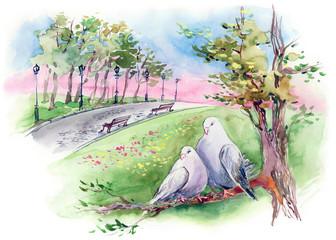 doves couple