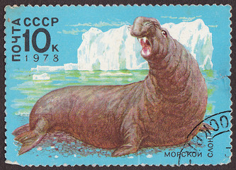 USSR - CIRCA 1978: A post stamp printed in USSR (Russia)