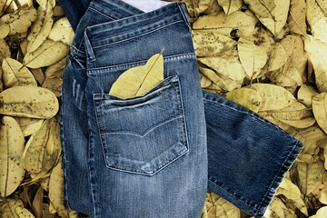 pair of jeans laid upon bed of fallen yellow autumn leaves
