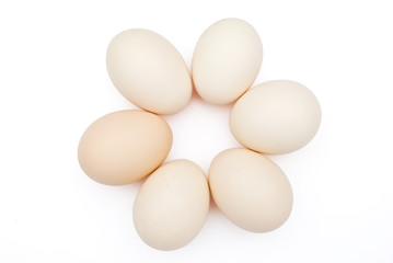 6 eggs lined up in circle with clipping path