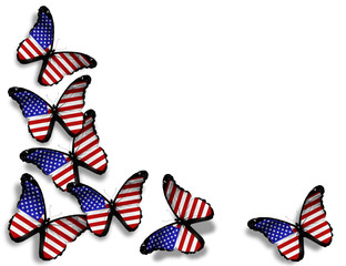 American flag butterflies, isolated on white background