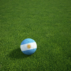 Argentinian soccerball lying on a grass field