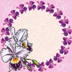 фон орхидеи рисунок