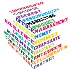 Abstract colored cube with  business terms