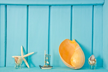 Shellfish decoration of the sea