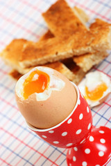 Boiled egg in a spotted eggcup